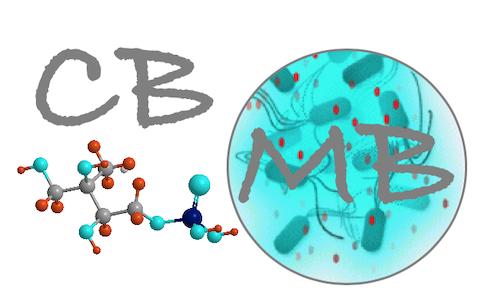 Chimie et Biochimie de Molécules Bioactives